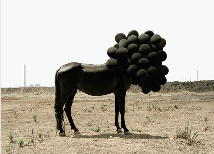 by Andrea Galvani