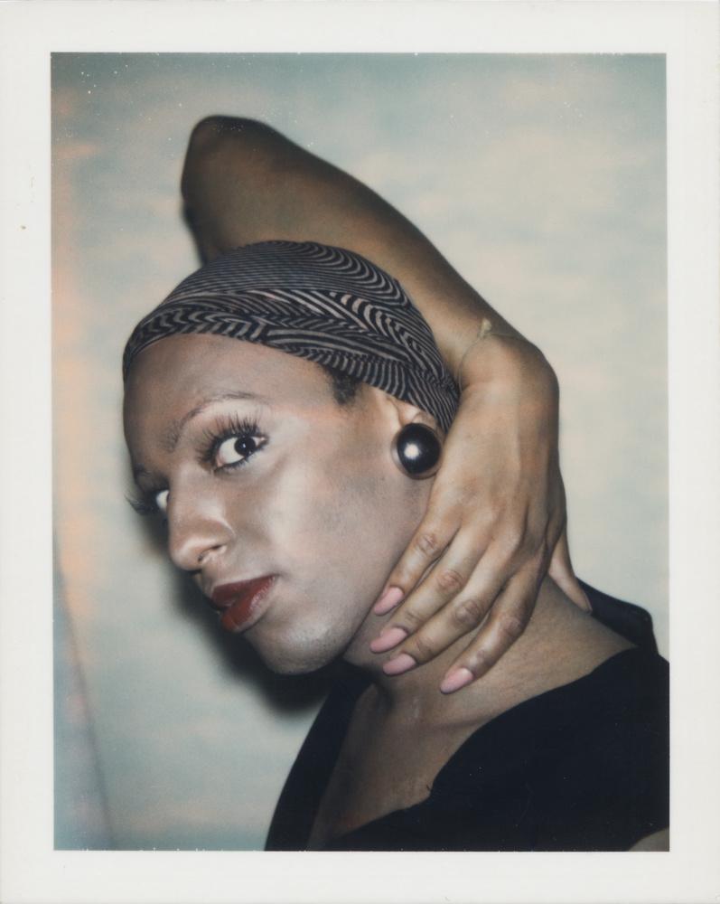 Warhol11813-Ladies-and-Gentlemen-_Wilhelmina-Ross_-3-1975