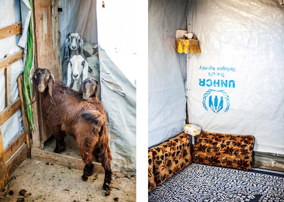 Refugee Libanon Unterkunft