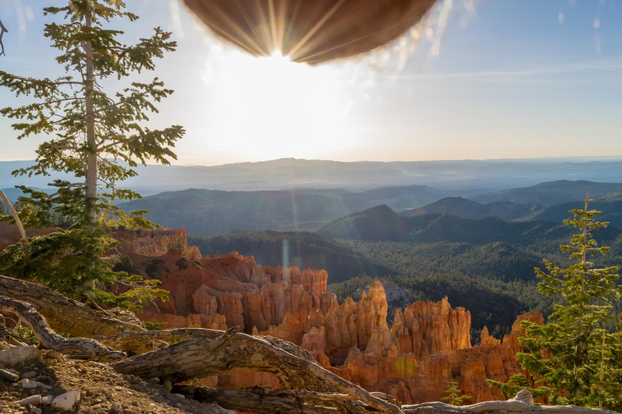 Schöne Landschaften und haarige Hoden - Nutscaping als