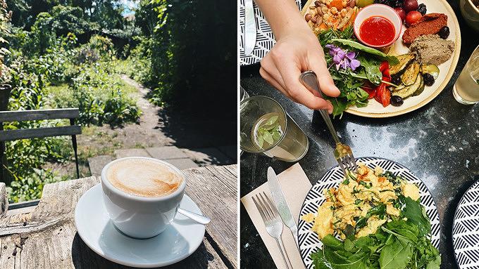 Café Botanico, Rixdorf, Wildkräuter, Frühstück, vegan