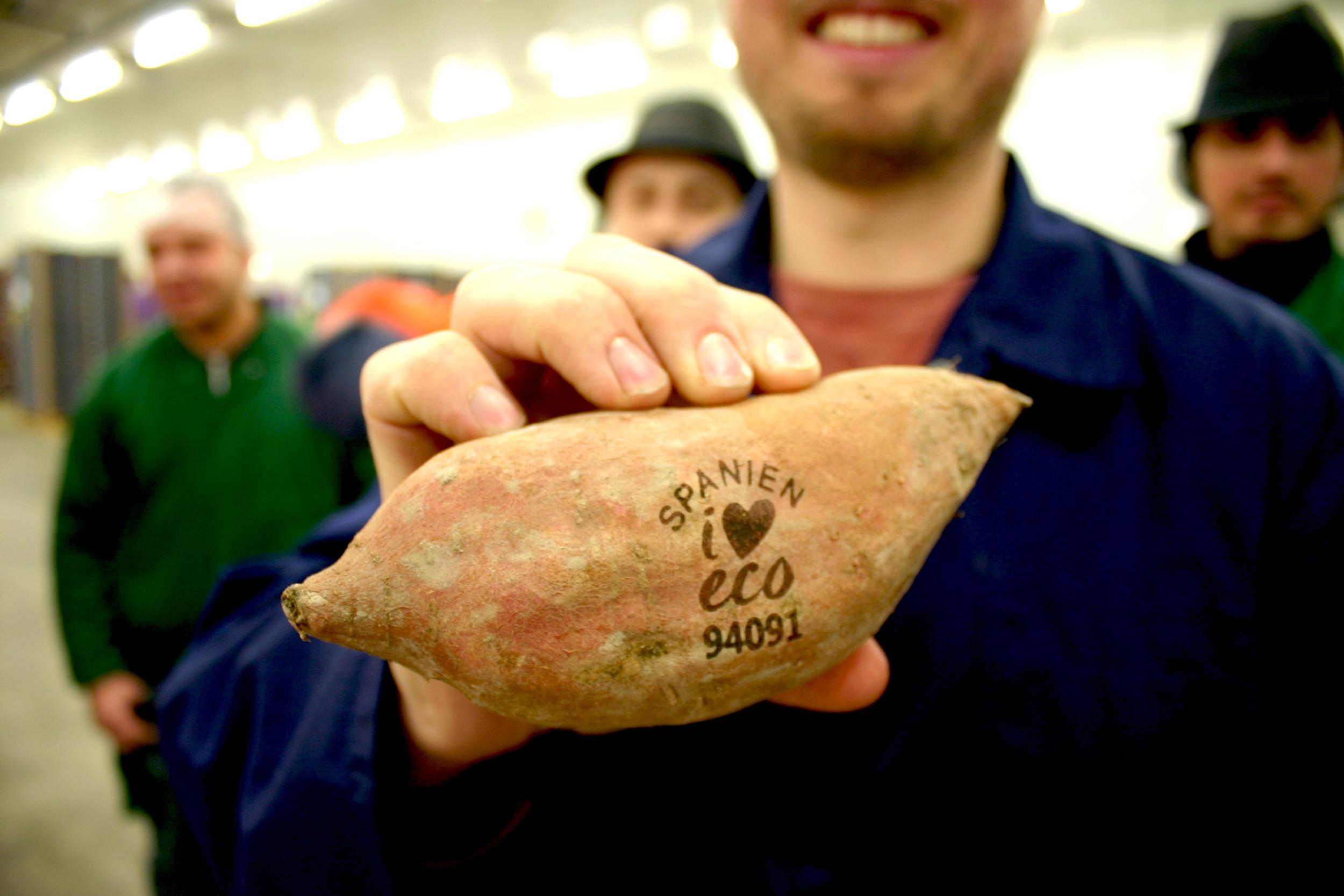 Licht-Tattoos statt Plastikhülle - Bald könnte Biogemüse ganz ohne Verpackung auskommen