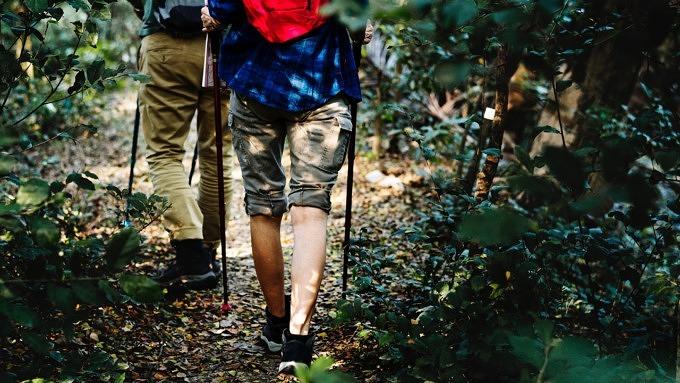 Zwei Männer wandern im Wald