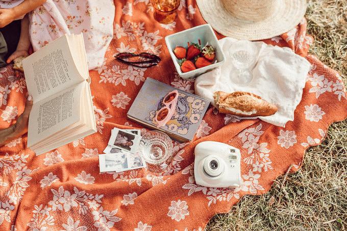 PIcknick Lesen Bücher Polaroid