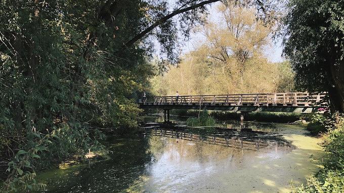 Tegeler Fließ, Berlin, Spaziergänge, spazieren gehen, Ausflug, Natur