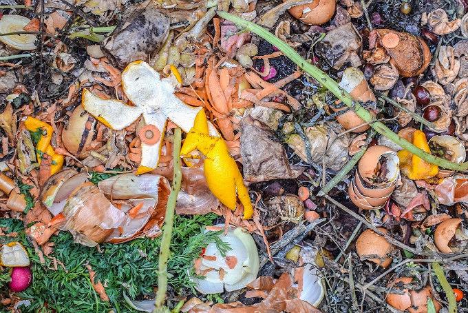 Bio Abfall, Kompost, Biomüll, grüne Tonne