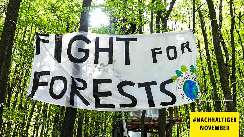 Frage am Freitag: Fridays For Future, was passiert im Klimaaktivismus trotz Corona?