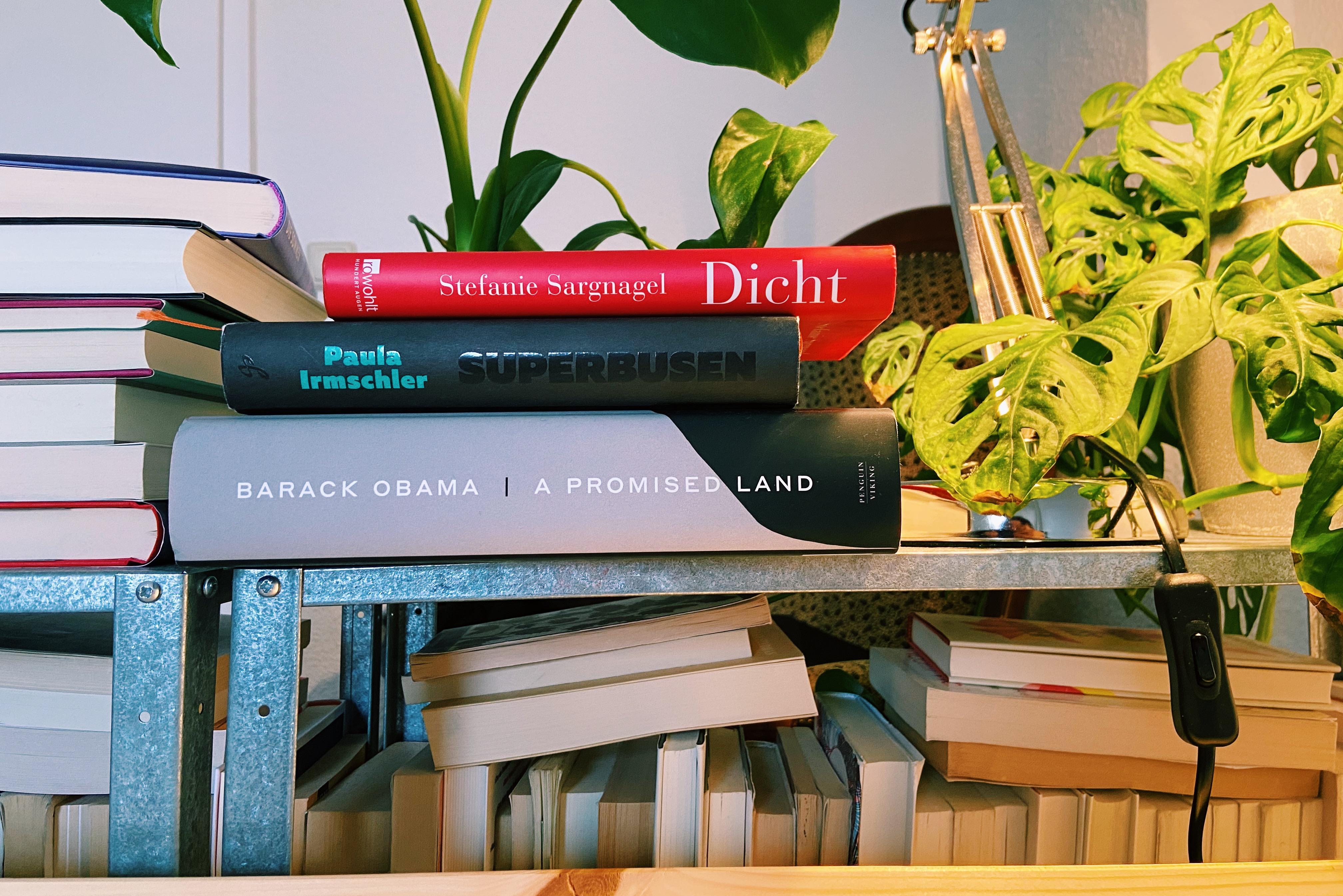 Lockdown 2.0: 11 Bücher, die wir gerade lesen und die uns ein gutes Gefühl geben