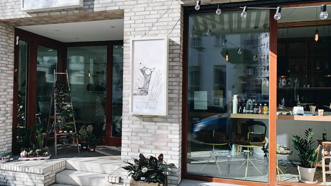Erchy's in Mitte, Kaffee, Berlin, Pflanzen, Fenster