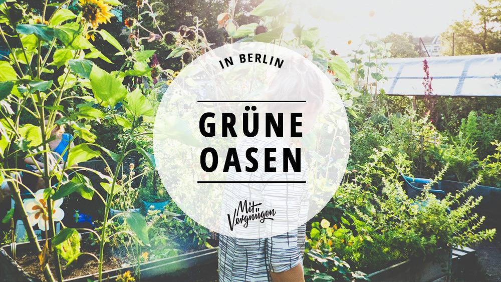 himmelbeet, Wedding, Berlin, Urban Gardening