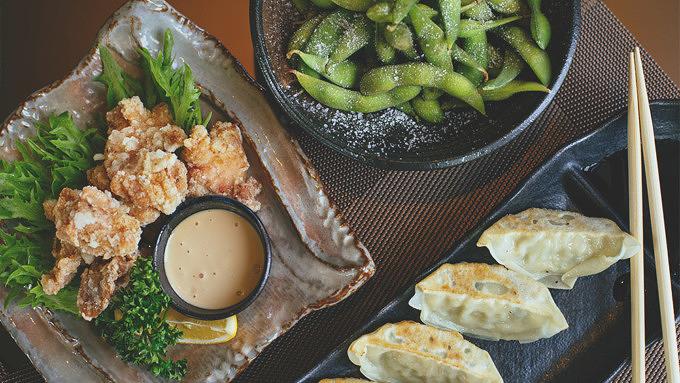 Udagawa, Japanisches essen, Dumplings, Fried Chicken